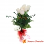 Florero con 6 Rosas Blancas con peluche