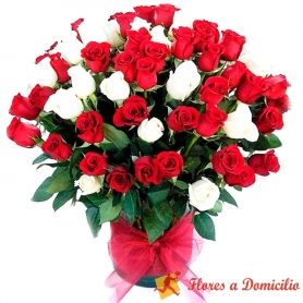 Florero 70 Rosas Premium