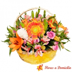 Flores en canastillo Mix Redondo Grande