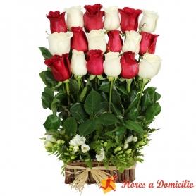 Canastillos con 18 rosas rojas y blancas Alineadas