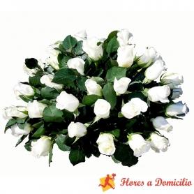 Ovalo de Condolencias de 25 Rosas Blancas