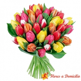 Ramo de Flores con 20 Tulipanes Mix de Colores