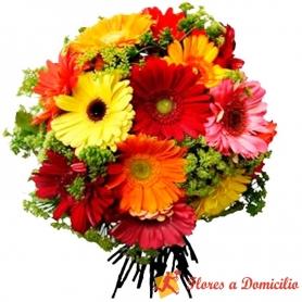 Ramo de Flores Con 20 Gerberas mix Colores y Follaje Verde