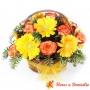 Canastillo de 12 Rosas Circus + Gerberas Amarillas
