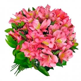 Ramo de 40 Astromelias Color Rosadas