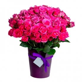 Florero de 24 rosas color fucsia