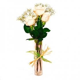 Condolencias Presencia 3 Rosas Blancas en Florero