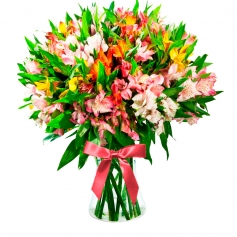 Florero 40 Astromelias Multicolores
