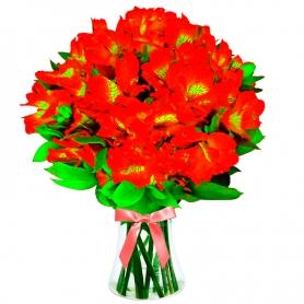 Florero 30 Astromelias Rojas