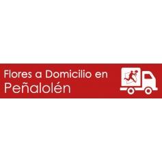 Flores a domicilio en Peñalolén
