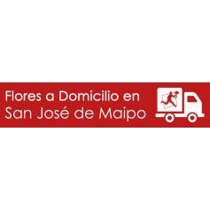 Flores a domicilio en San José de Maipo