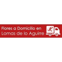 Flores en a domicilio Lomas de Lo Aguirre
