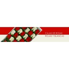 Cajas con Rosas Rojas y Blancas