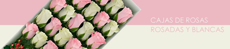 Cajas con Rosas Rosadas y Blancas