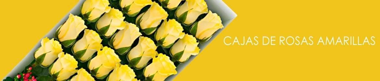 Cajas con Rosas Amarillas