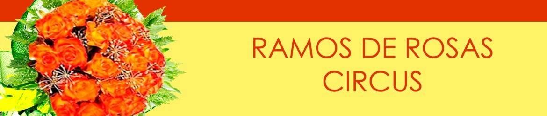 Ramos de Rosas Circus
