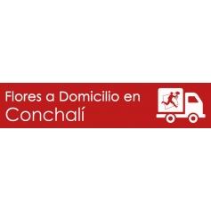 Flores a domicilio en Conchalí