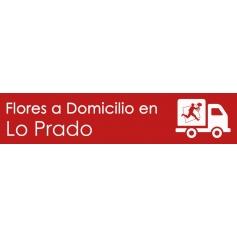 Flores a domicilio en Lo Prado