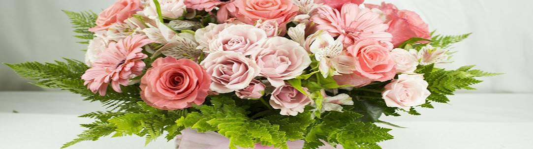 Flores A Domicilio Envio De Flores Florerias En Santiago